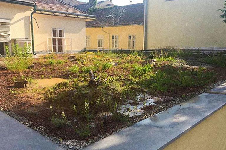 Prokopp seit 2019, Baden, Österreich